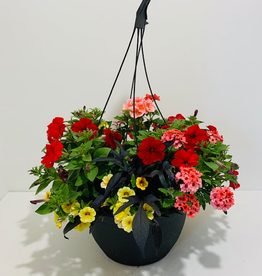 """Hanging Basket, Assorted Annuals, 12"""""""