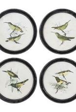 Round Wood W/Bird Print