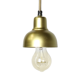 Petite Brass Metal Webster Pendant