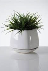 Planter, Mod Cube Small, White Ceramic, 4.5 x 4.5""