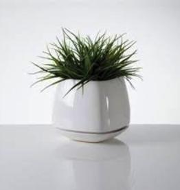 """Planter, Mod Cube Small, White Ceramic, 4.5 x 4.5"""""""