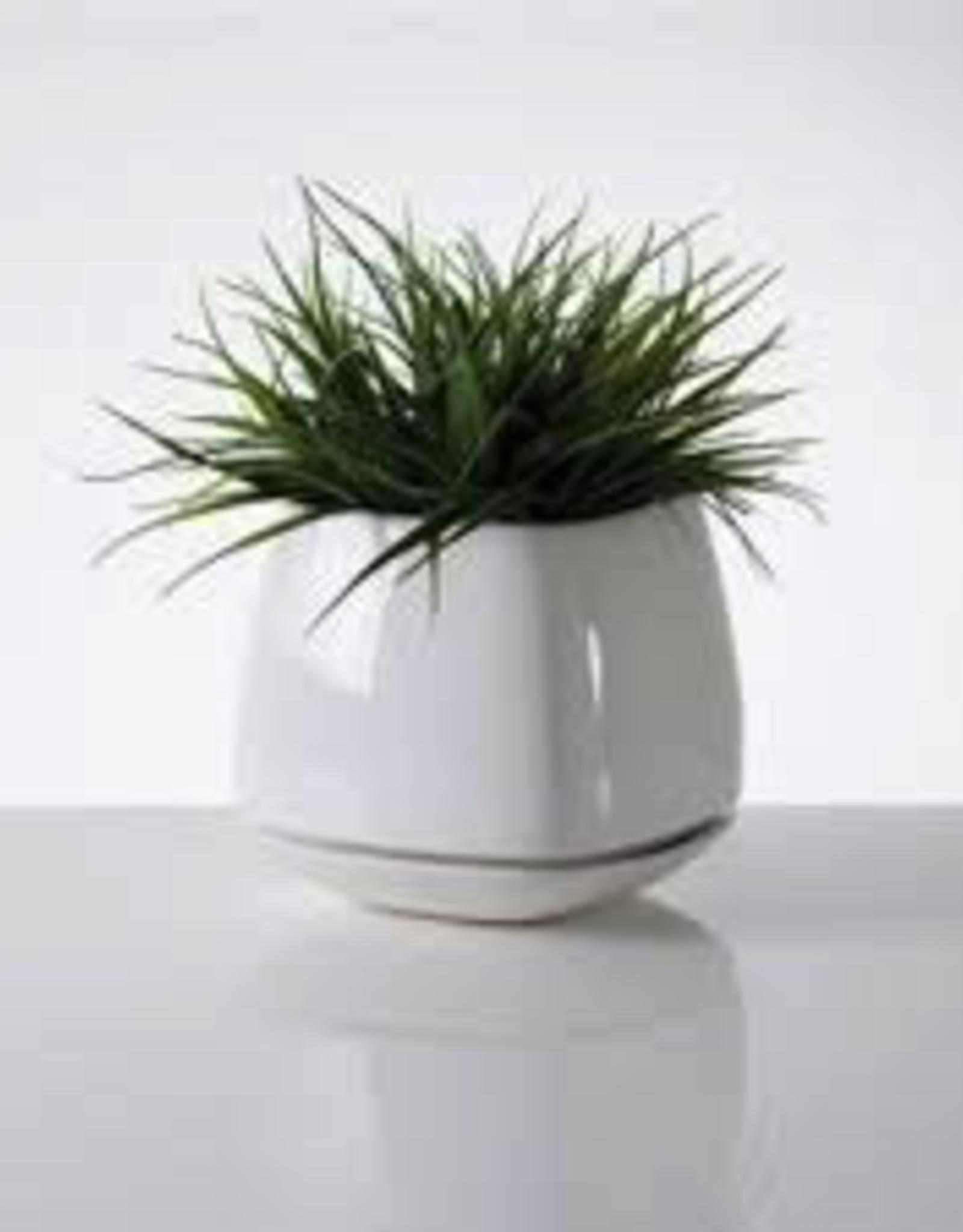 "Planter, Mod Cube Large, White Ceramic, 7 x 7"""