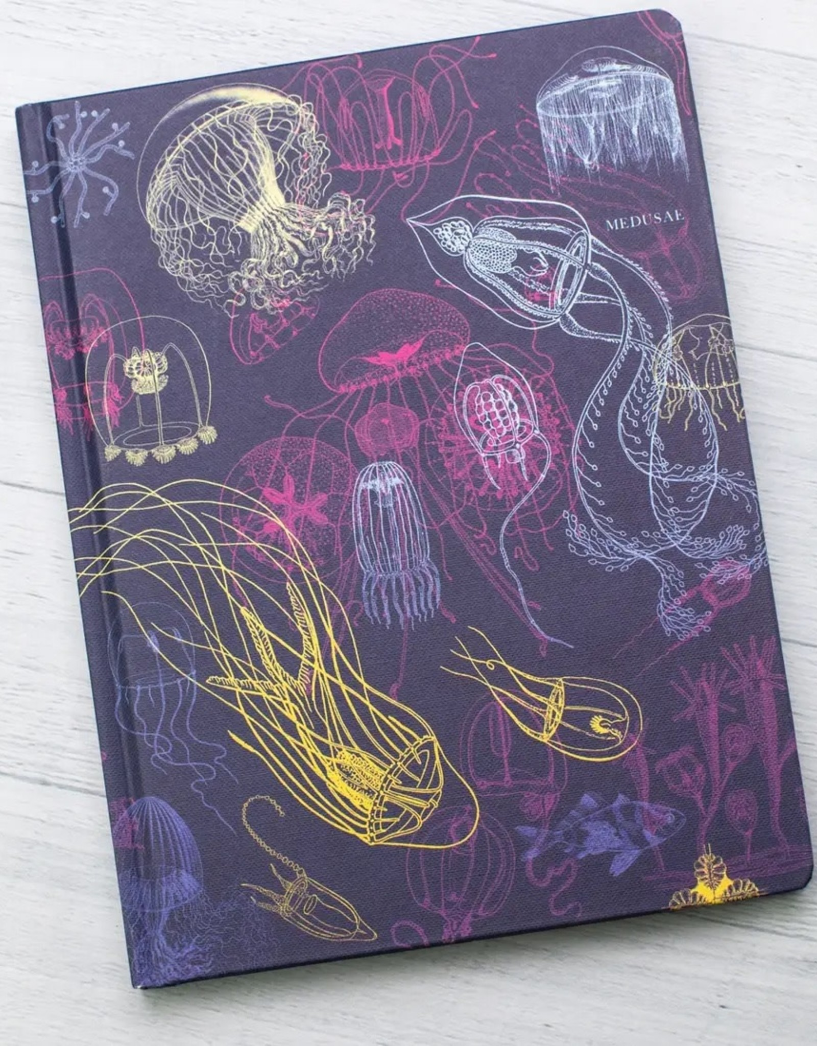 Jellyfish with Dot Grid Hardcover Notebook