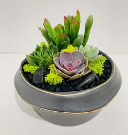 "6.5"" Dark Grey Kure Bowl Arrangement"