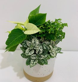 "Holiday Floral Arrangement in 4"" 2-Tone Ceramic Container"