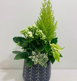 "Holiday Floral Arrangement in 7"" Navy & Gold Container"