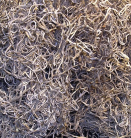 1lb Bag Natural Spanish Moss