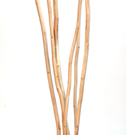 Kamboi Stick, Single Stem