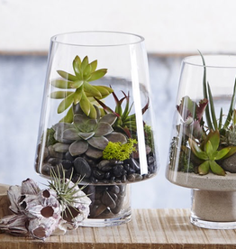 Small Glass Terrarium Container - Does not include plants - Reg $29 Now $15