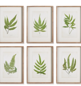Forest Greenery Print - 6 Assorted Styles