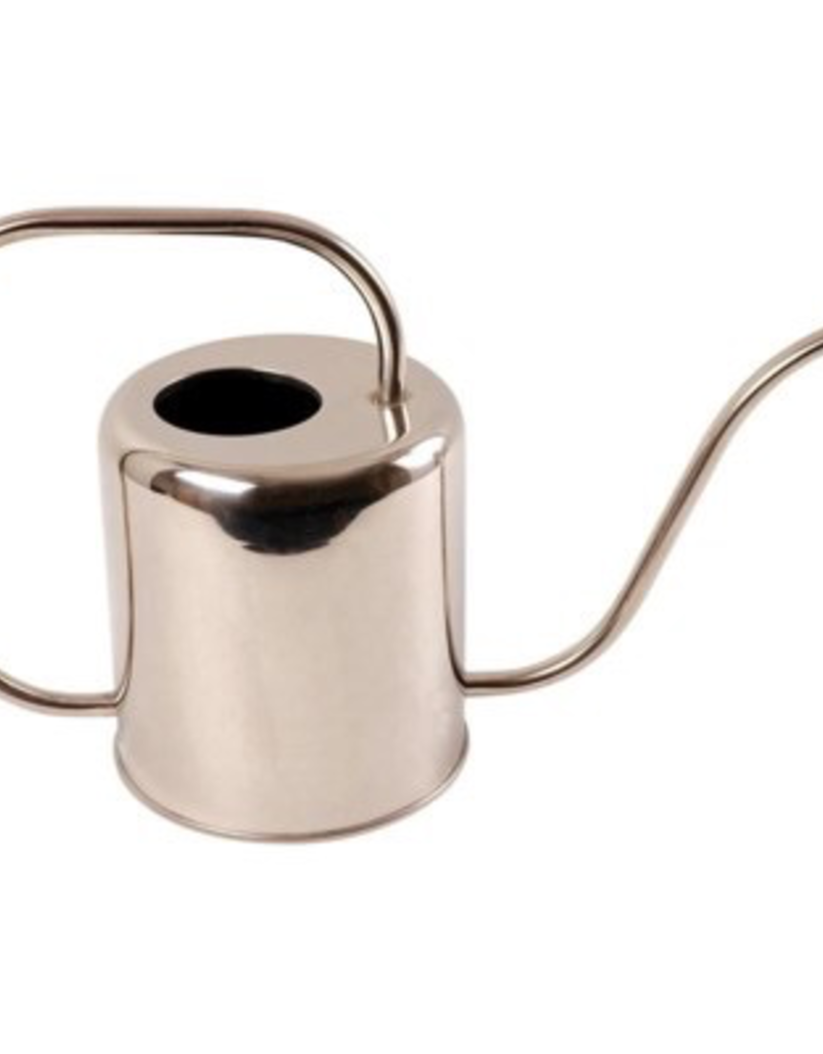 Stainless Watering Can