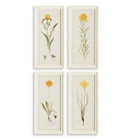 """L10.75"""" H21.75"""" Yellow Flower Prints"""