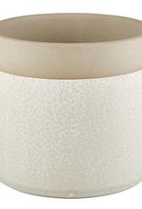 "4"" Cream  with Natural Top Band Pot"