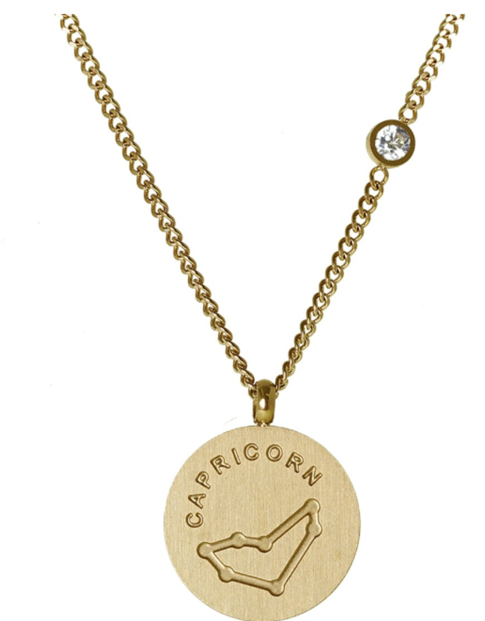 Gold Capricorn Necklace