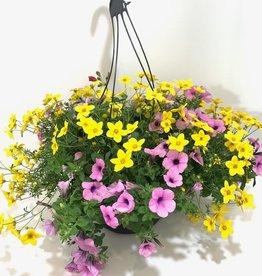 """12"""" Hanging Basket Yellow, Purple & Red"""