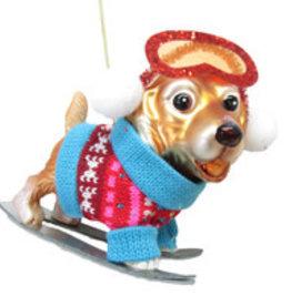 Gold Retriever Ski Dog Ornament