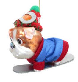Bulldog on Snowboard Ornament
