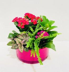 "Flowering Plant Arrangement in 8"" Pink Bowl"