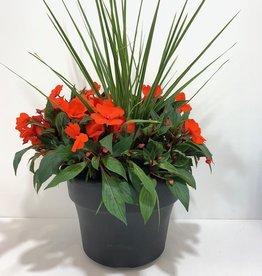 """Orange New Guinea Impatiens Patio Planter 12"""""""