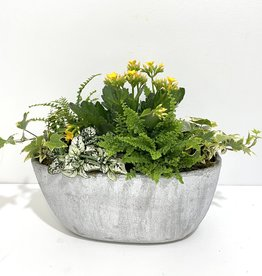 Flowering Plant Arrangement in Grey Boat