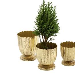Medium Gold Floralis Mini Urn