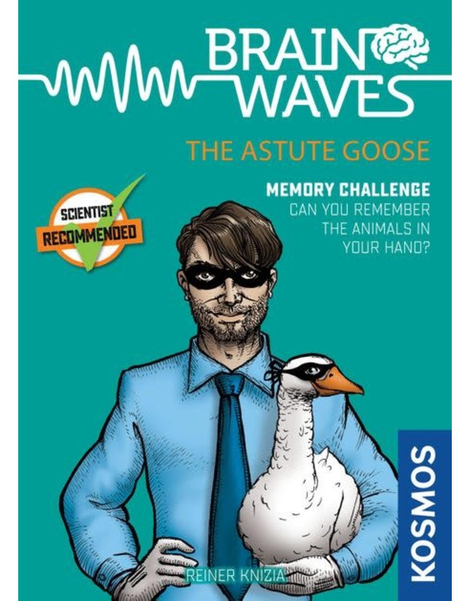 Brain Waves The Astute Goose