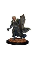 Pre-Painted Premium Elf Cleric