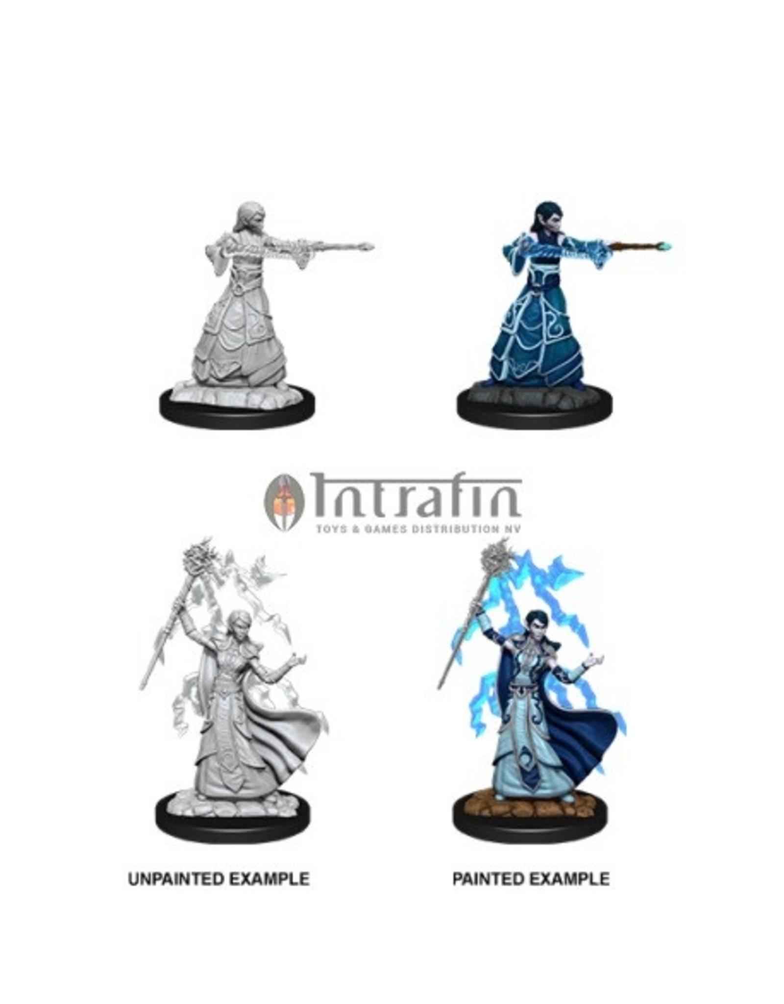 Nolzur's Marvelous Miniatures - Elf Wizard