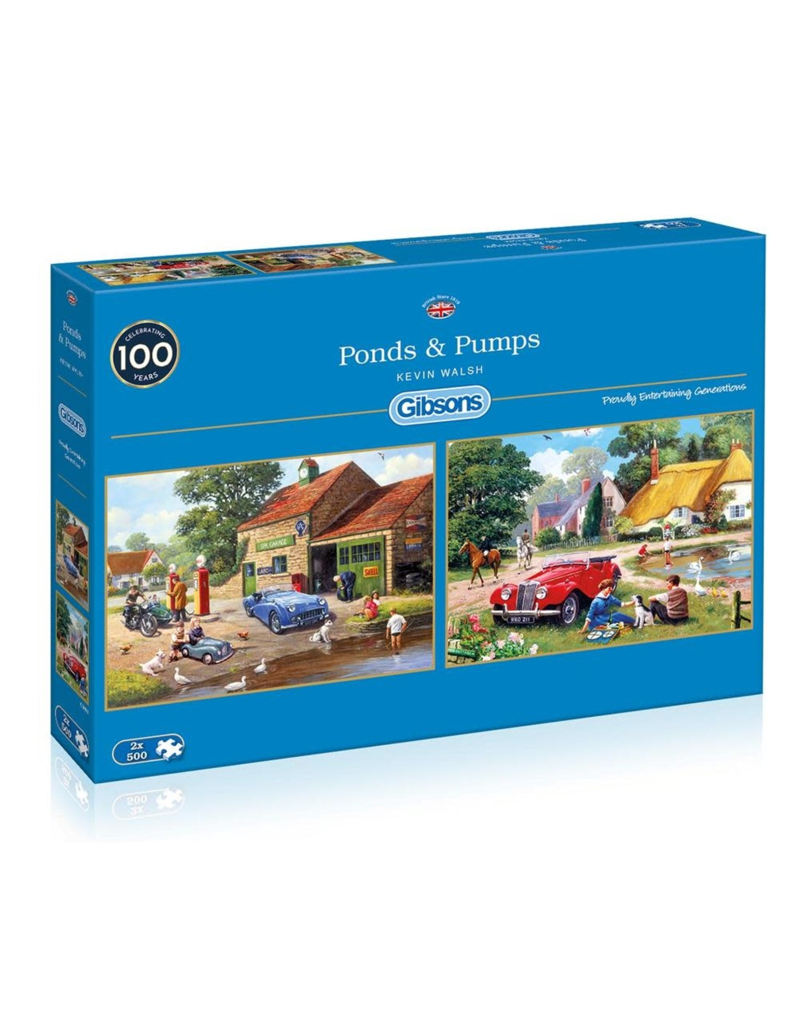 Gibsons Gibsons Pond & Pumps 2 x 500 Pieces