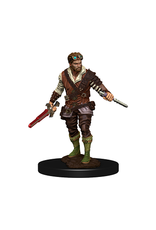 WizKids Icons of the Realm Male Human Rogue Premium