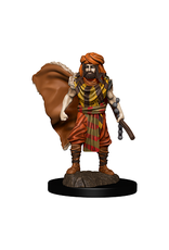 WizKids Icons of the Realm Male Human Druid
