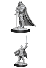 Wizards of the Coast Dungeons and Dragons Unpainted Minis Wave 13 - Human Paladin Male