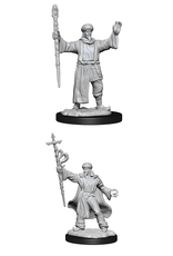 Wizards of the Coast Dungeons and Dragons Unpainted Minis Wave 13 - Human Wizard Male