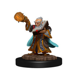 WizKids Icons of the Realm Gnome Wizard Male Prem Fig