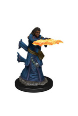 WizKids Icons of the Realm Human Wizard Female Prem Fig