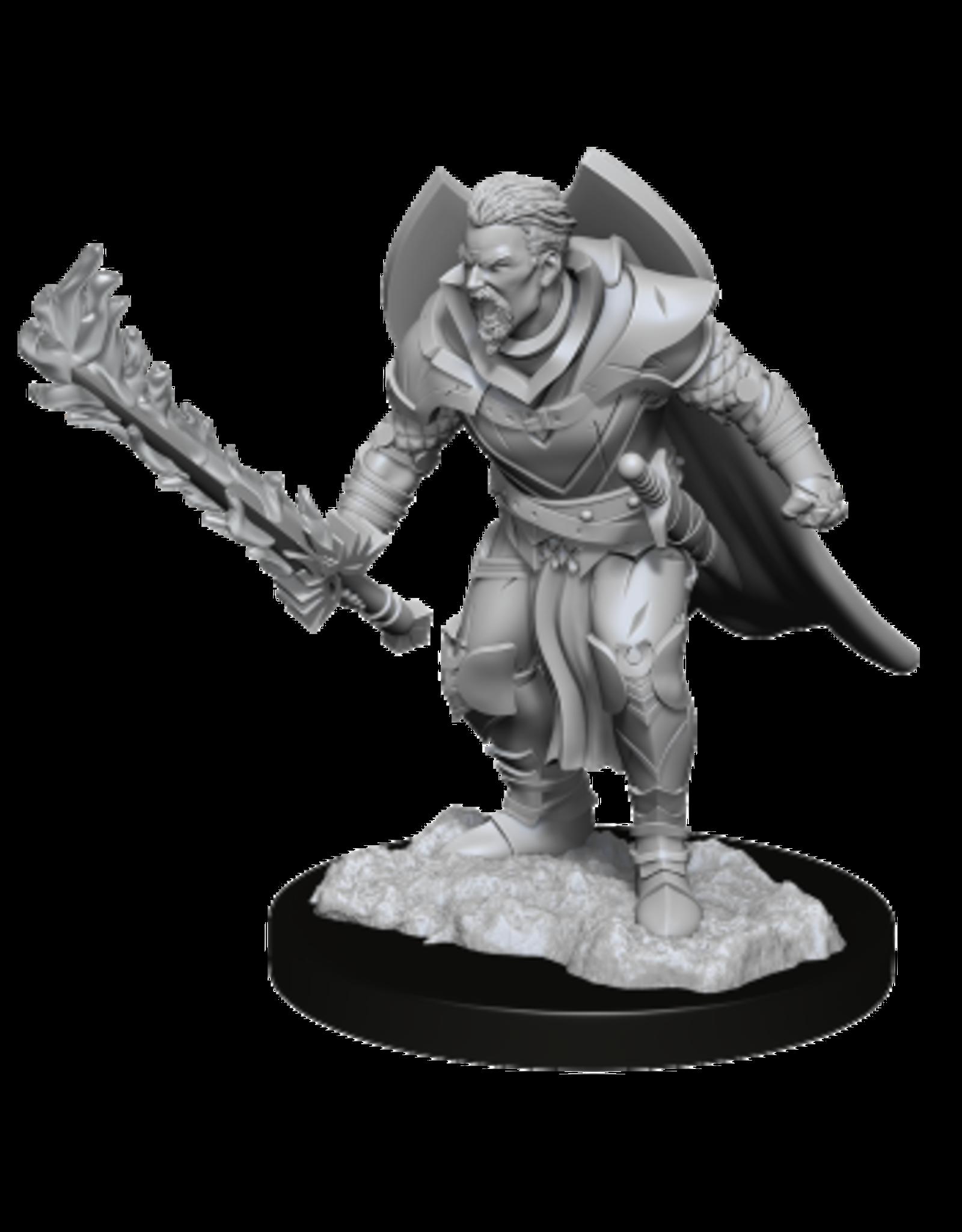 WizKids Male Human Champion Pathfinder Mini
