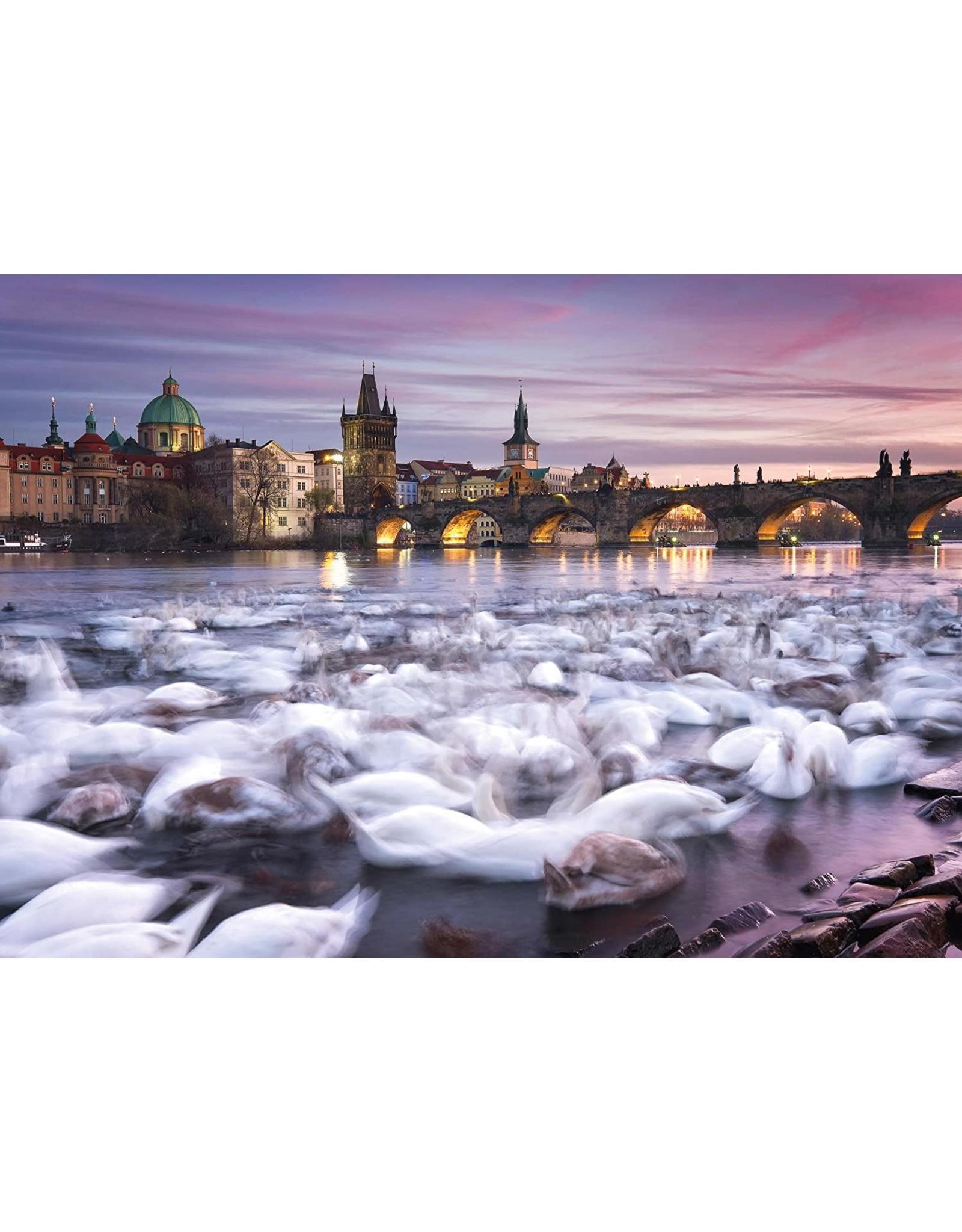 Schmidt Prague Swans Puzzle 1000 Pc