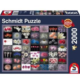 Schmidt Schmidt Puzzle: Floral Greeting 2000 Pieces