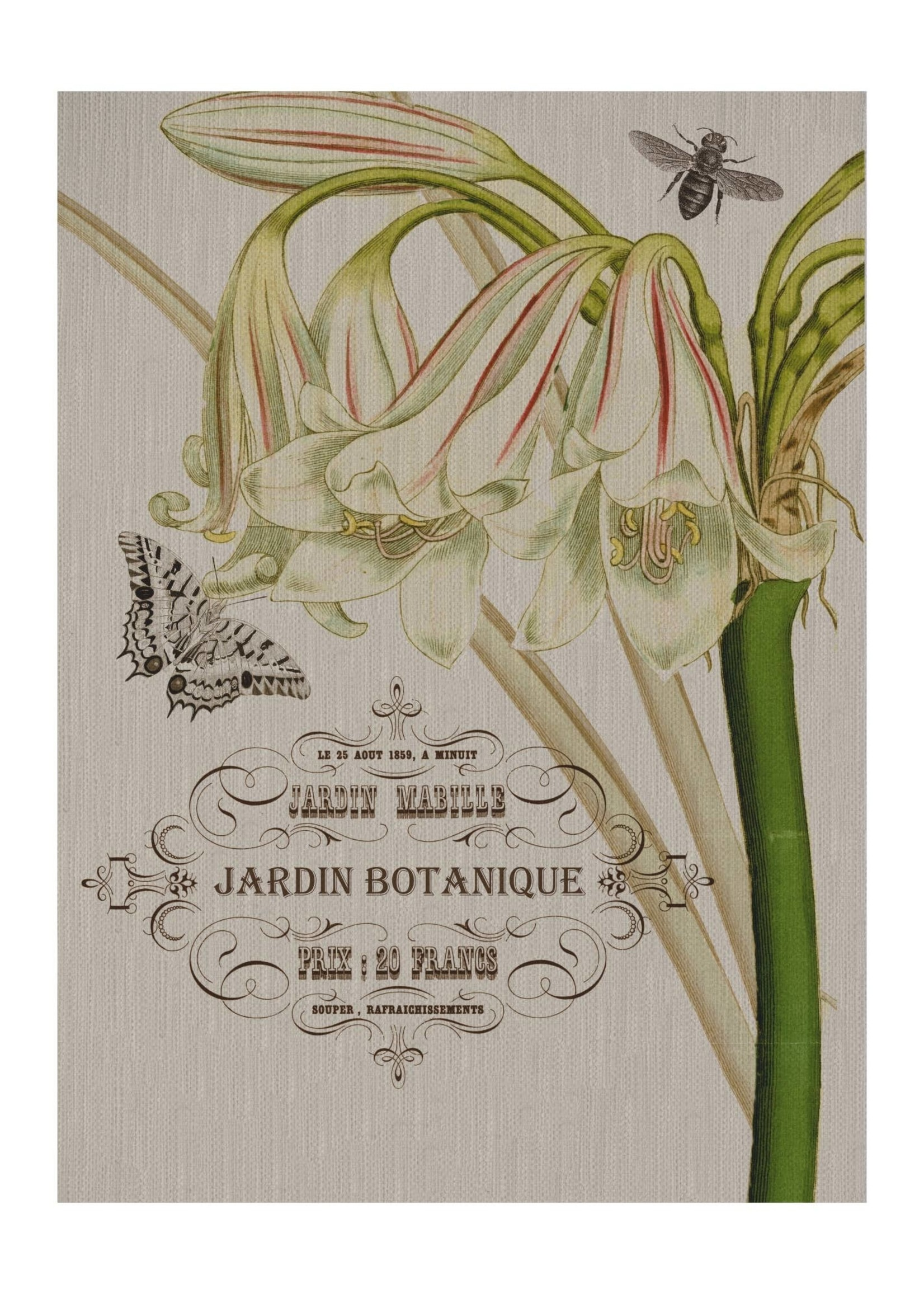 Jardin-Floral, Fabric Gallery Wrapped