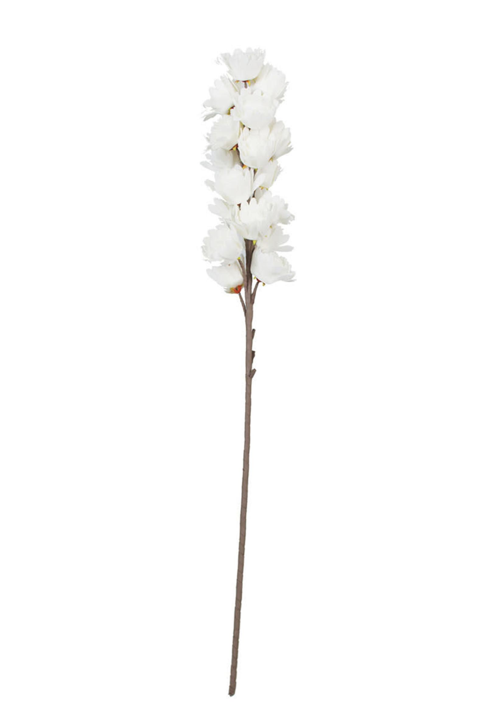 Botanica #3104
