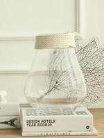 Noah Decoration Hemp Rope Clear Glass Vase - Small