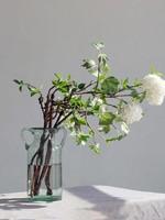 Noah Decoration Farmhouse Double Ear Green Tint Glass Vase - Large
