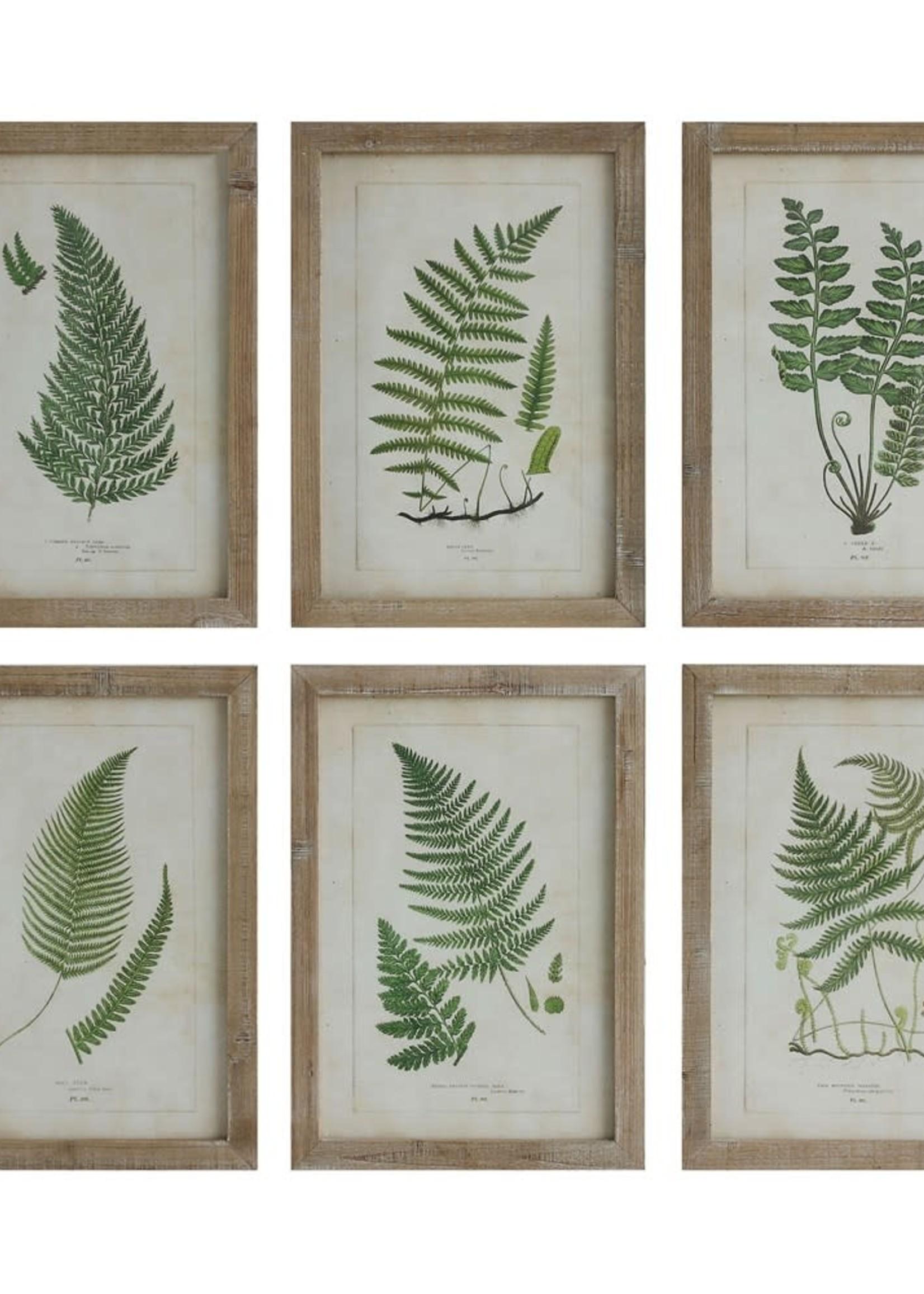 """19-3/4""""H Wood Framed Wall Decor w/ Ferns, 6 Styles"""