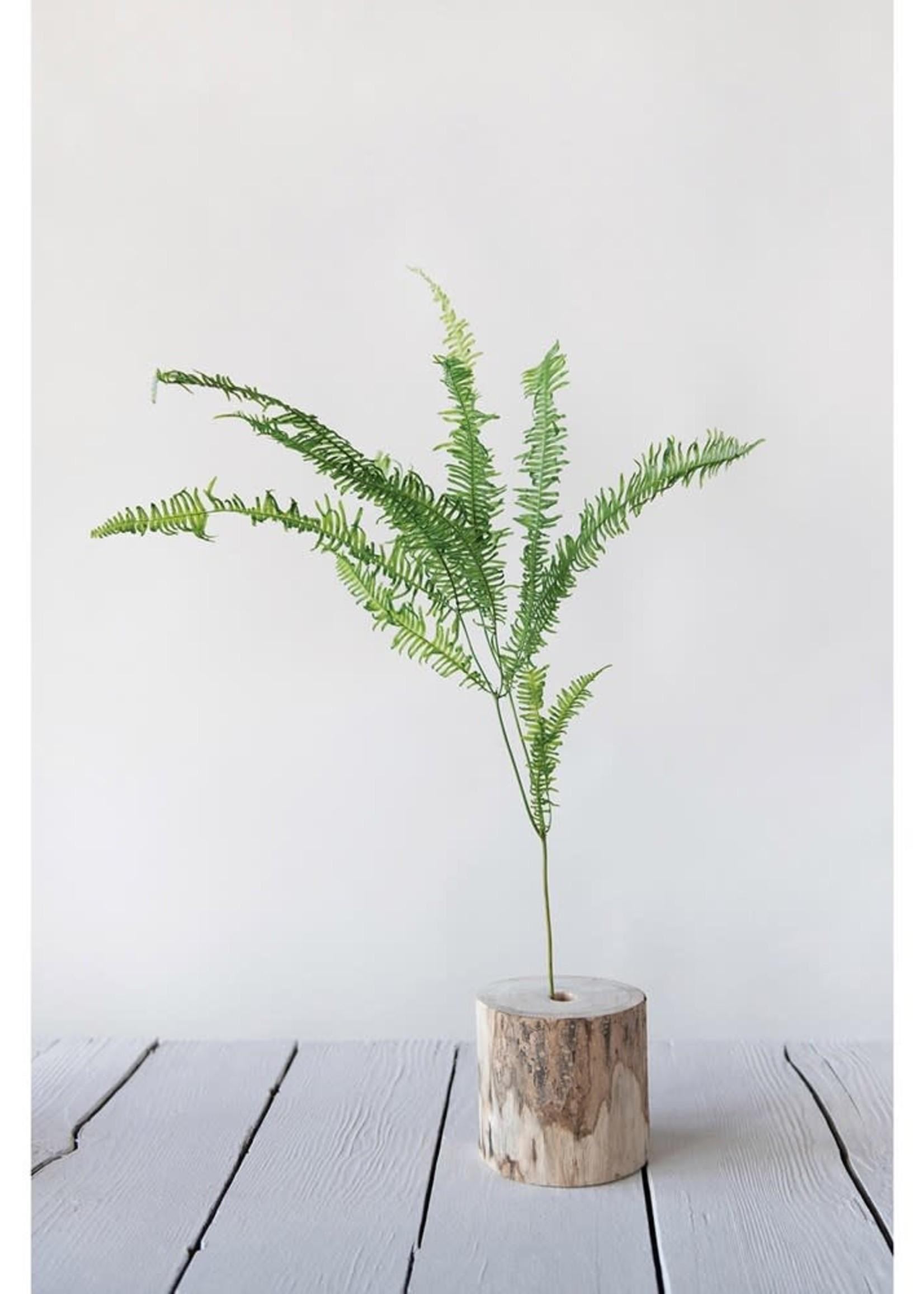 "27-1/2""L Dried Pteris Natural Fern Bunch"