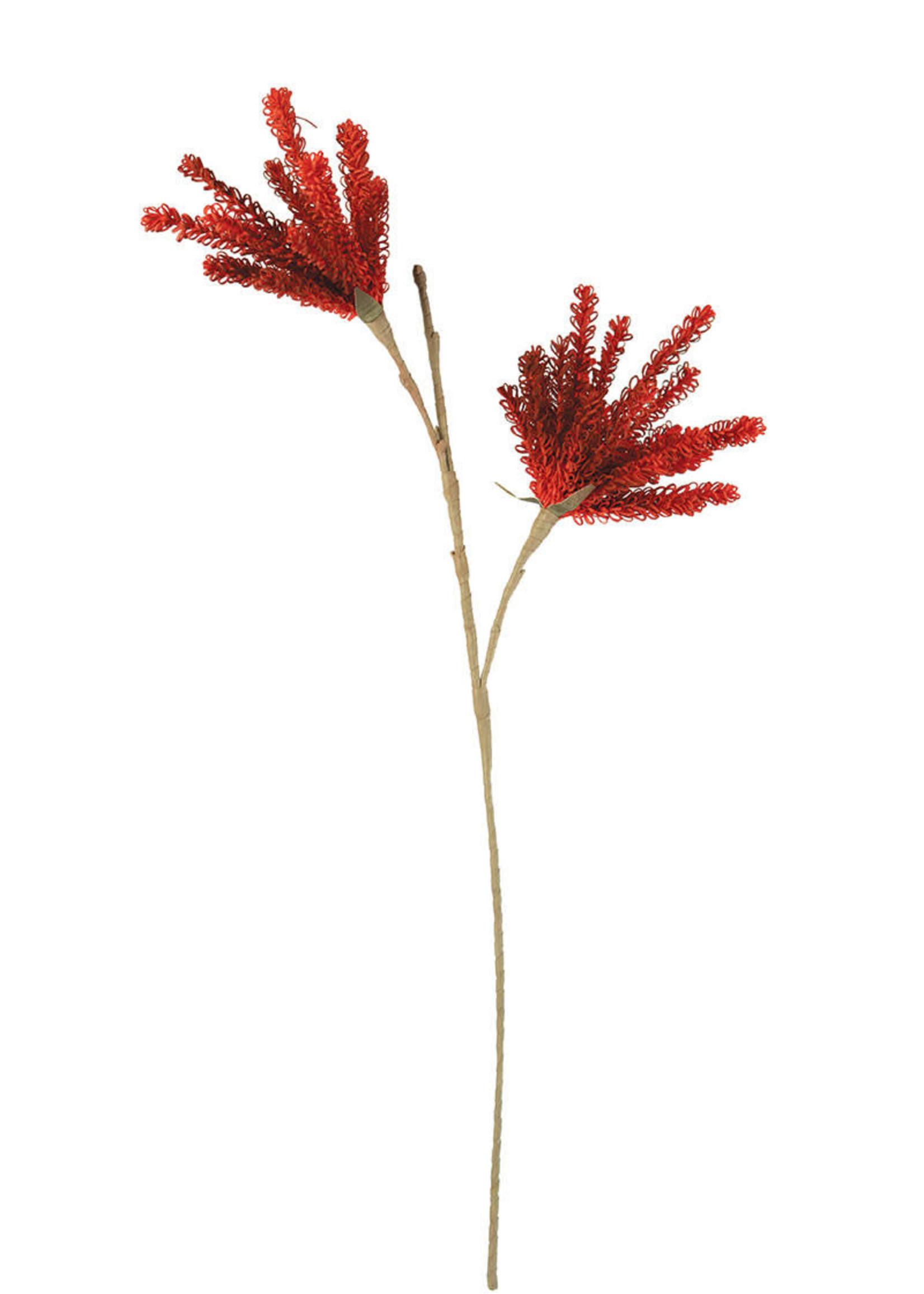 Botanica #3163
