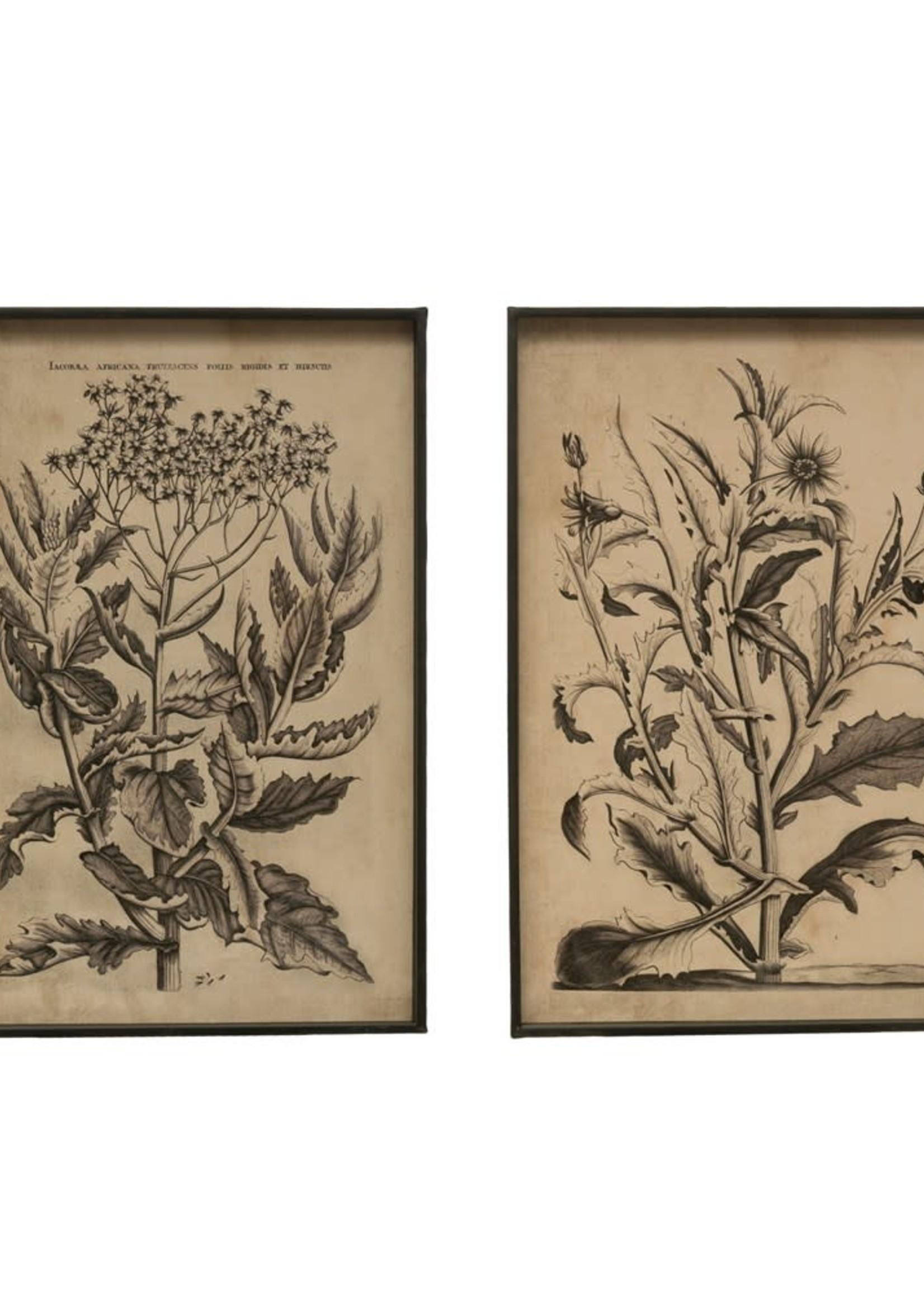 """23-1/2""""H Metal Framed Floral Image, 2 Styles"""