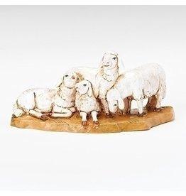 Fontanini Sheep Herd