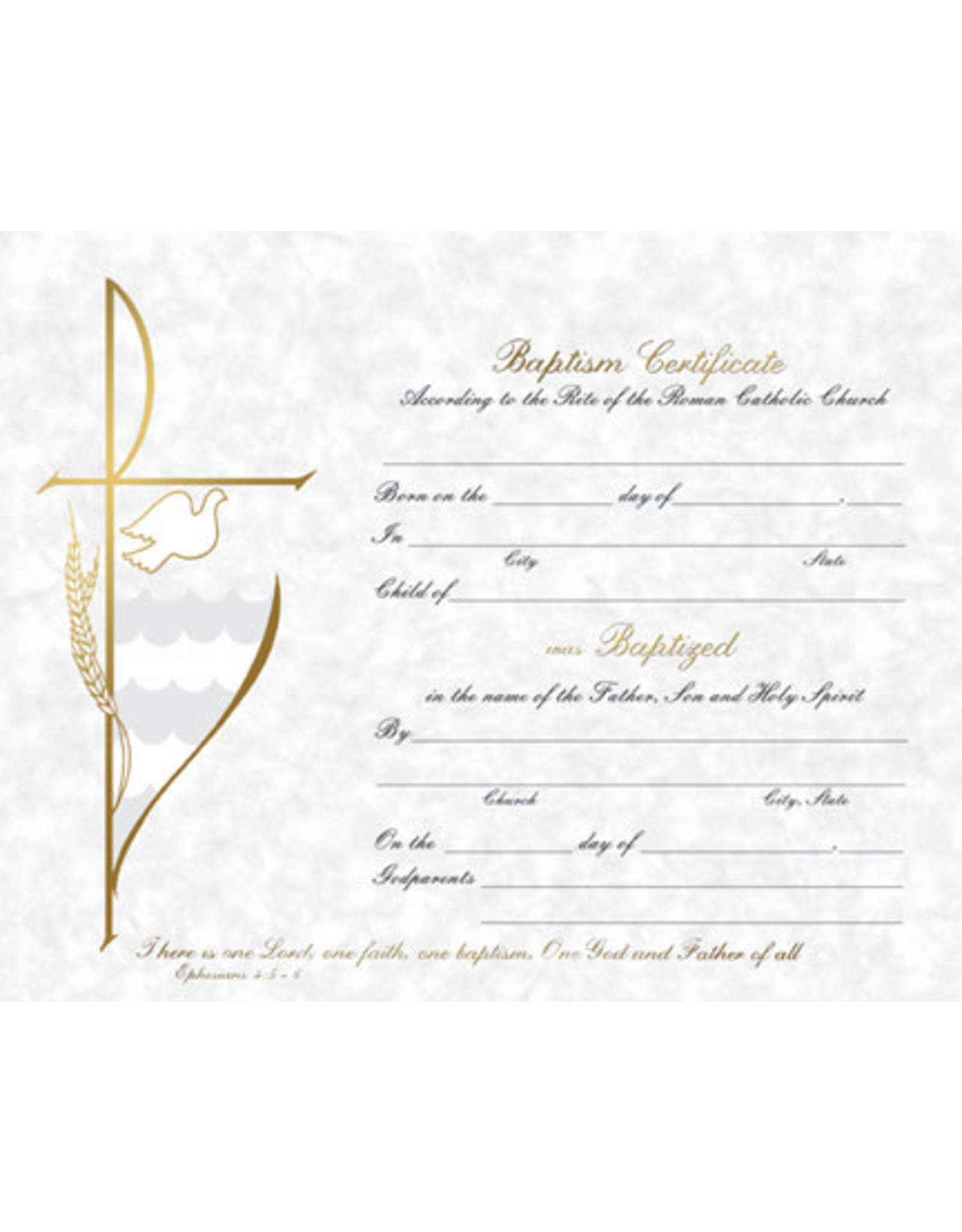 Baptism Certificate (50)