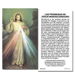 Holy Card Divine Mercy Spanish (100)