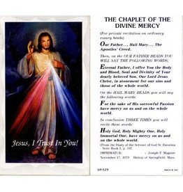 Holy Card Divine Mercy (100)